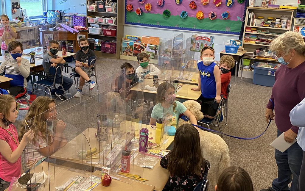 Students pet a dog in their classroom